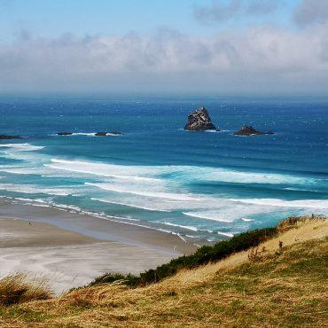 Otago et Otaries